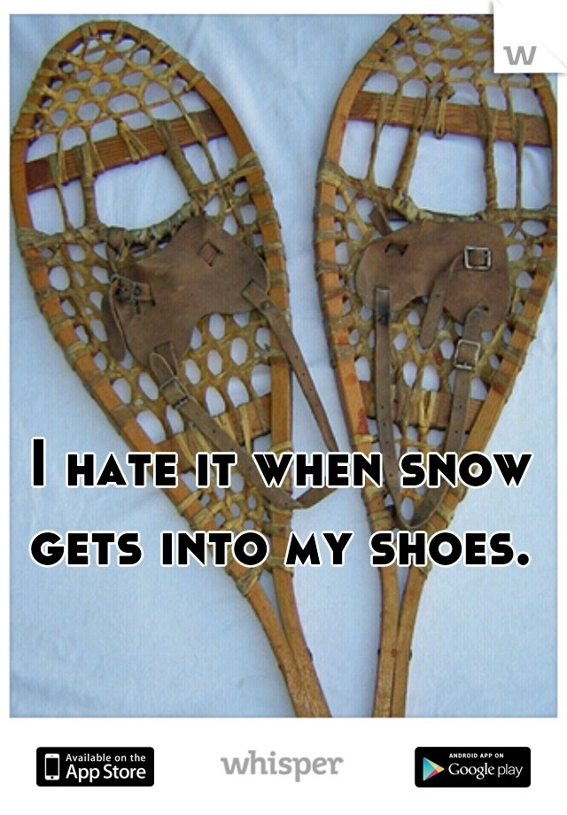 I hate it when snow gets into my shoes.