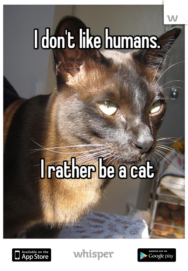 I don't like humans.      I rather be a cat
