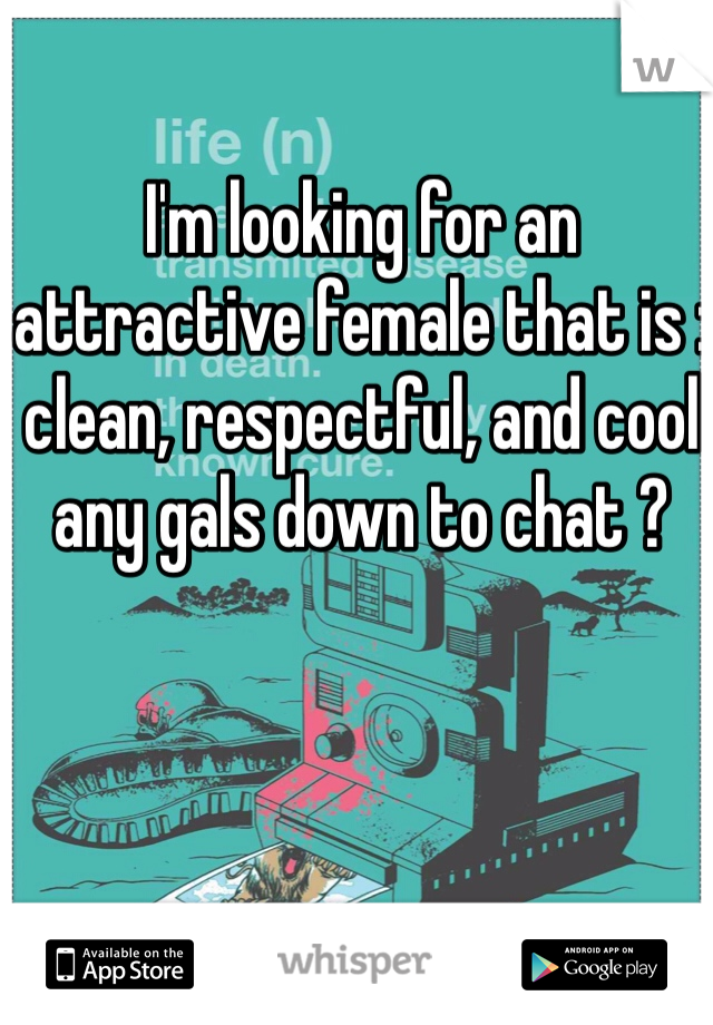I'm looking for an attractive female that is : clean, respectful, and cool any gals down to chat ?