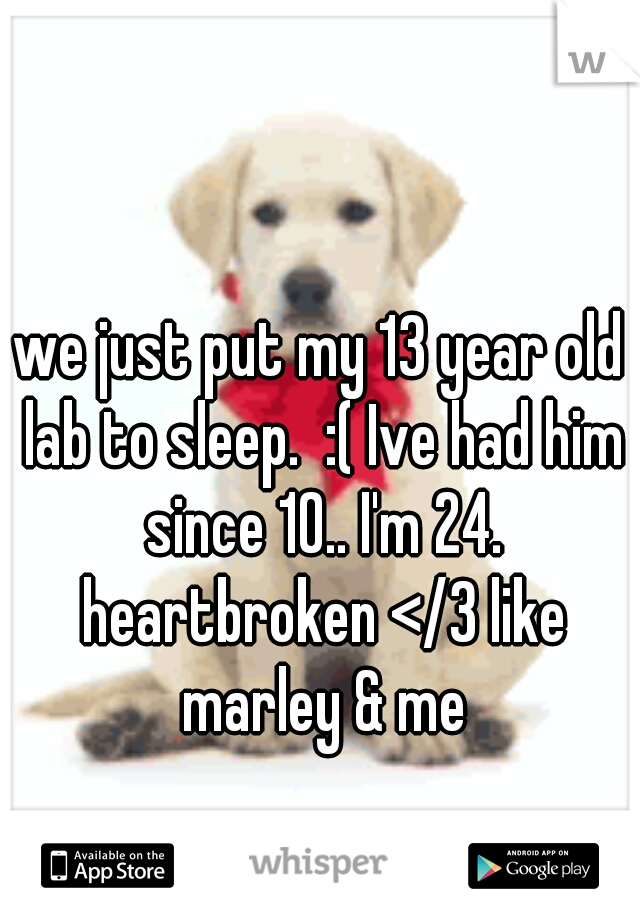 we just put my 13 year old lab to sleep.  :( Ive had him since 10.. I'm 24. heartbroken </3 like marley & me