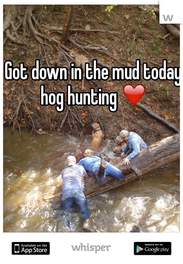 Got down in the mud today hog hunting ❤️