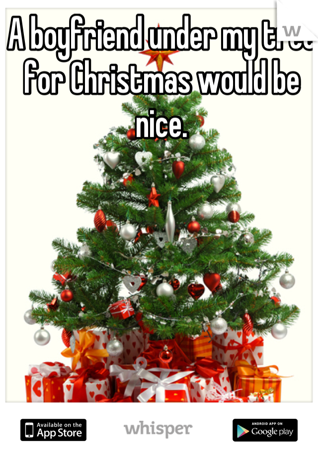 A boyfriend under my tree for Christmas would be nice.