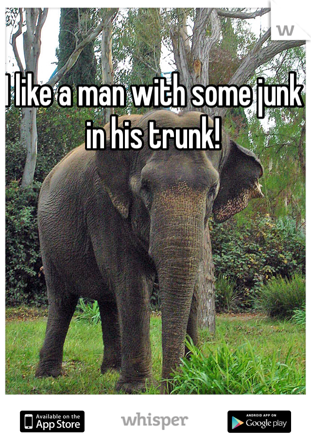 I like a man with some junk in his trunk!
