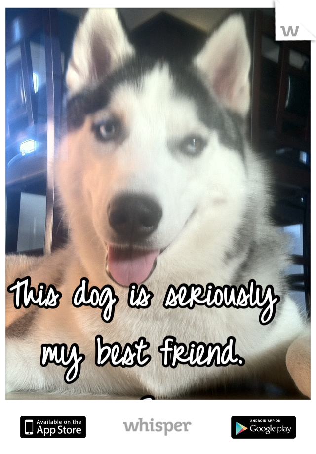 This dog is seriously my best friend. <3