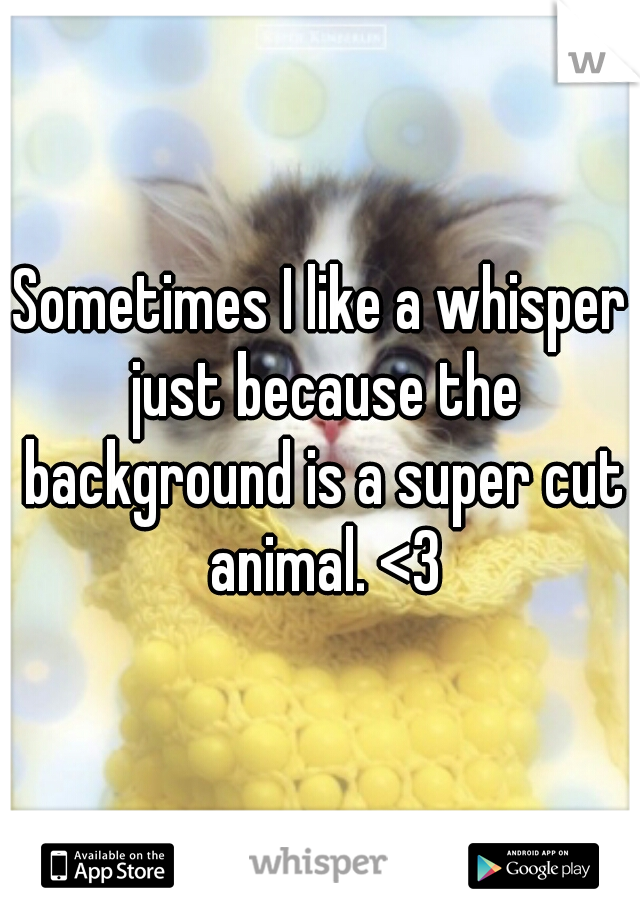 Sometimes I like a whisper just because the background is a super cut animal. <3