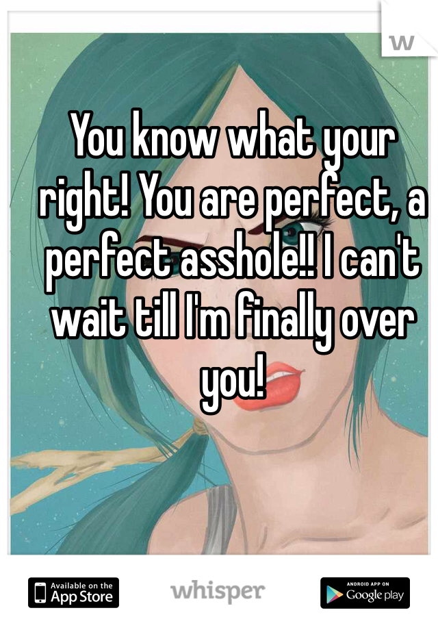You know what your right! You are perfect, a perfect asshole!! I can't wait till I'm finally over you!