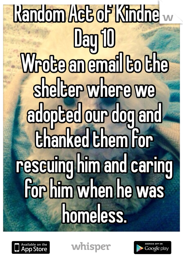 Random Act of Kindness Day 10 Wrote an email to the shelter where we adopted our dog and thanked them for rescuing him and caring for him when he was homeless.