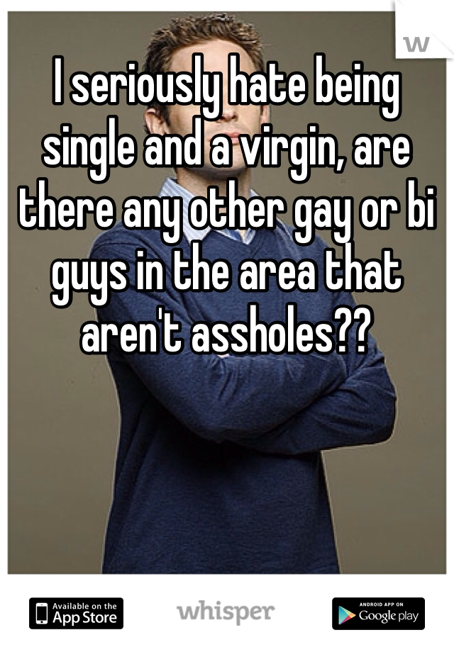 I seriously hate being single and a virgin, are there any other gay or bi guys in the area that aren't assholes??