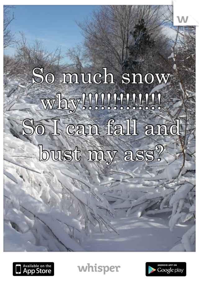 So much snow why!!!!!!!!!!!!!  So I can fall and bust my ass?