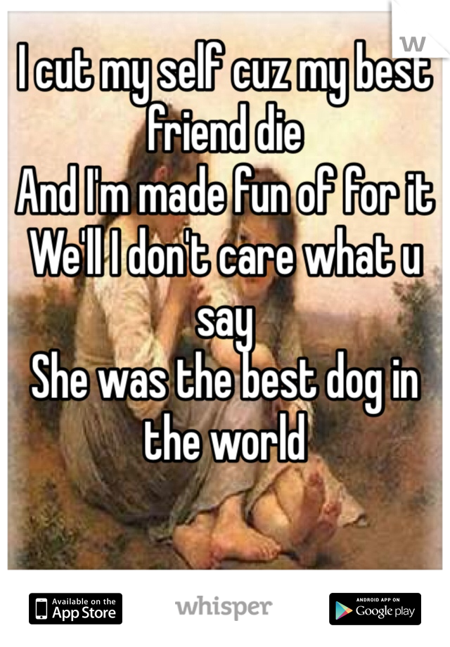 I cut my self cuz my best friend die And I'm made fun of for it We'll I don't care what u say  She was the best dog in the world