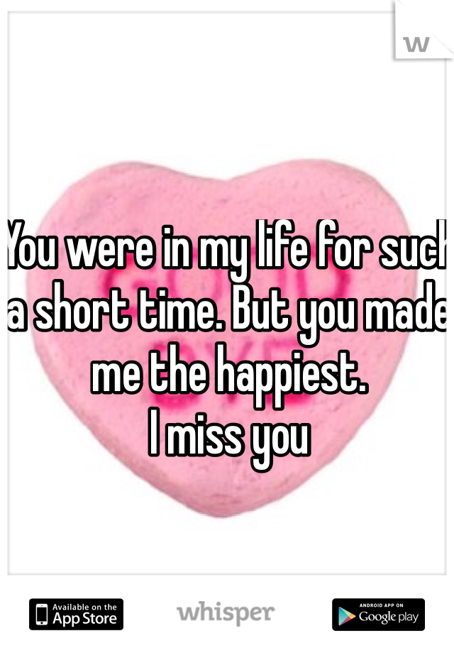 You were in my life for such a short time. But you made me the happiest. I miss you