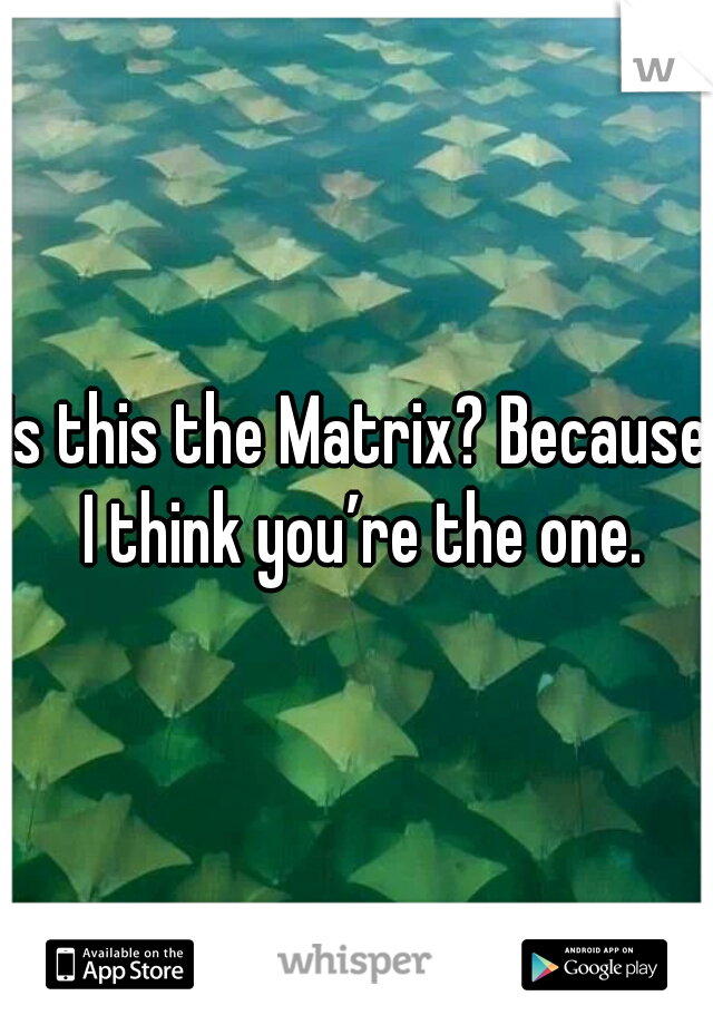 Is this the Matrix? Because I think you're the one.