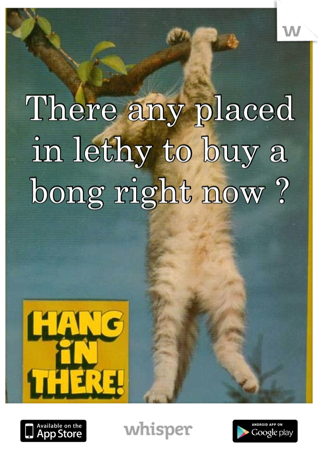 There any placed in lethy to buy a bong right now ?