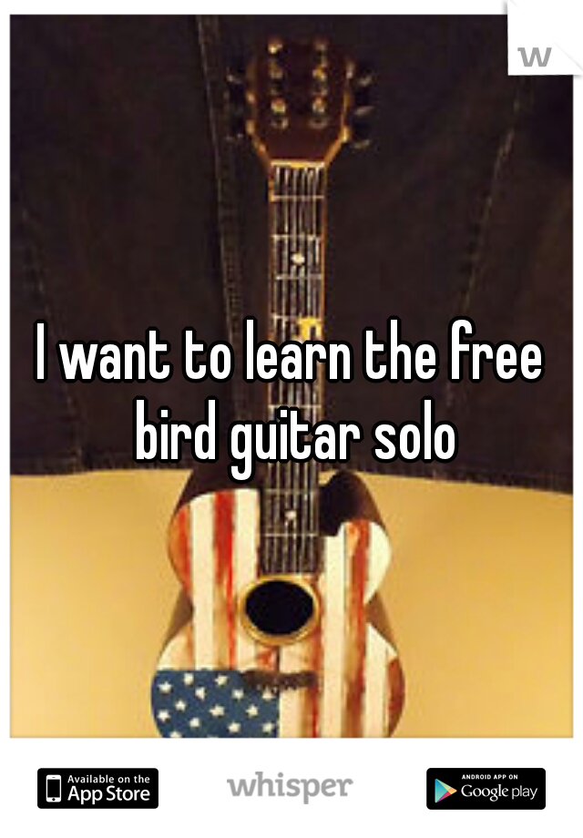 I want to learn the free bird guitar solo