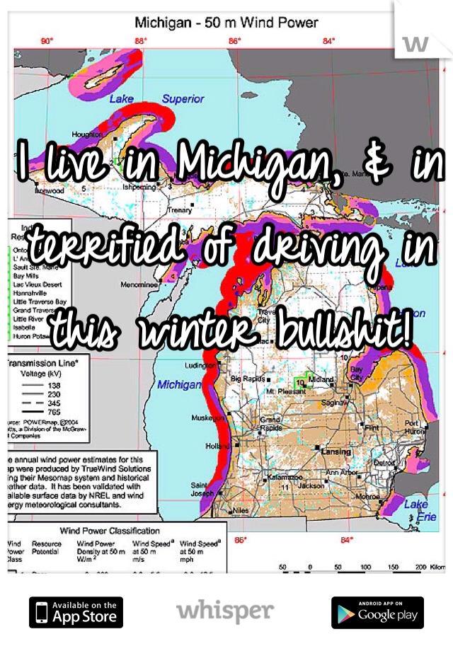 I live in Michigan, & in terrified of driving in this winter bullshit!