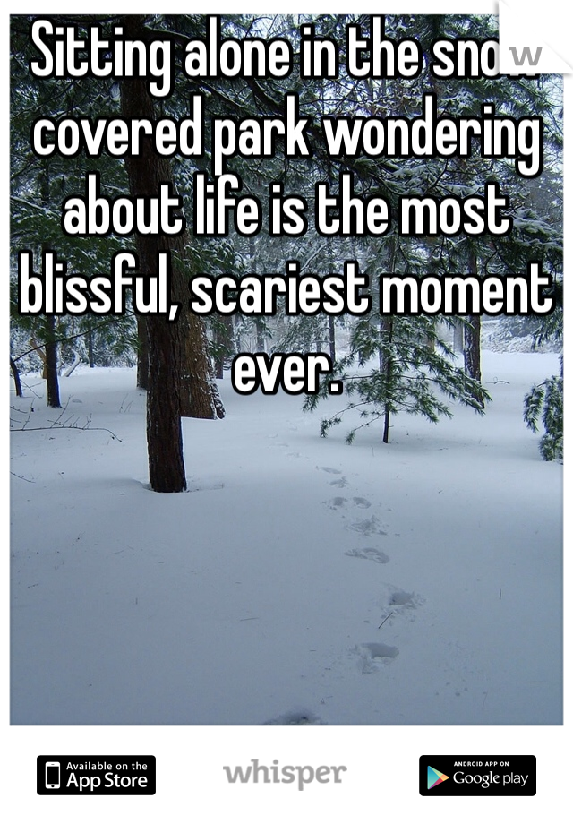 Sitting alone in the snow covered park wondering about life is the most blissful, scariest moment ever.