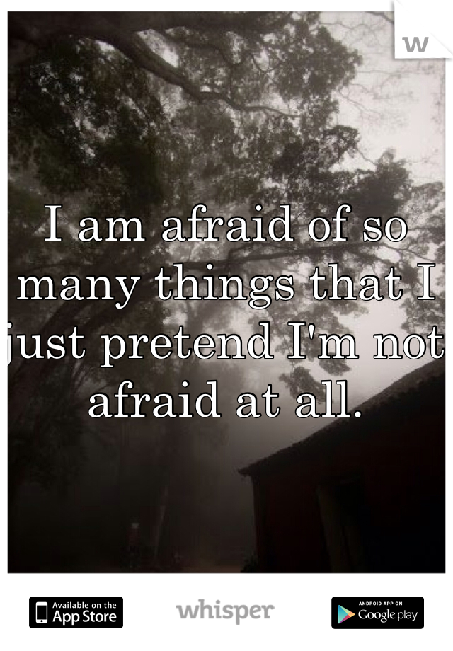 I am afraid of so many things that I just pretend I'm not afraid at all.