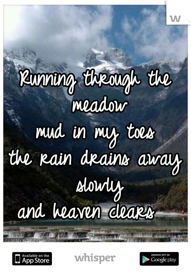 Running through the meadow mud in my toes the rain drains away slowly and heaven clears
