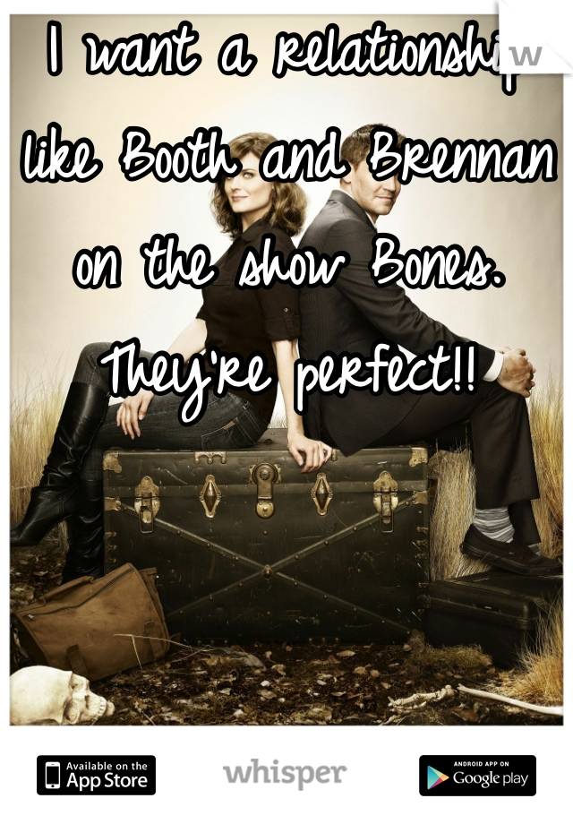 I want a relationship like Booth and Brennan on the show Bones. They're perfect!!
