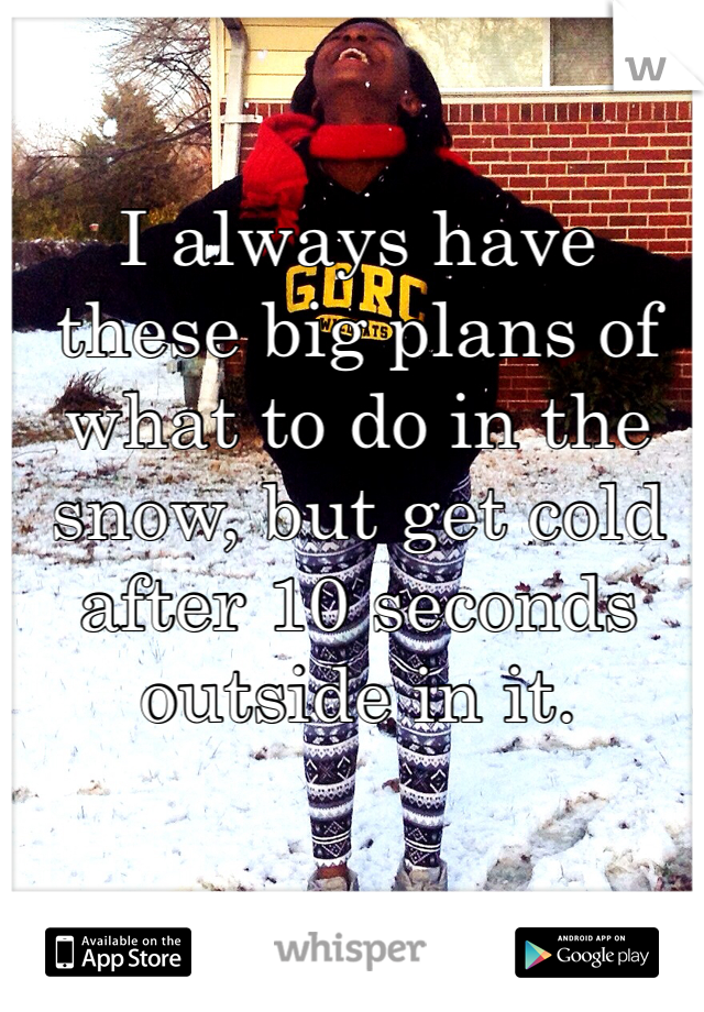 I always have these big plans of what to do in the snow, but get cold after 10 seconds outside in it.