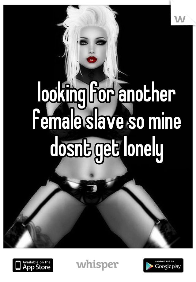 looking for another female slave so mine dosnt get lonely