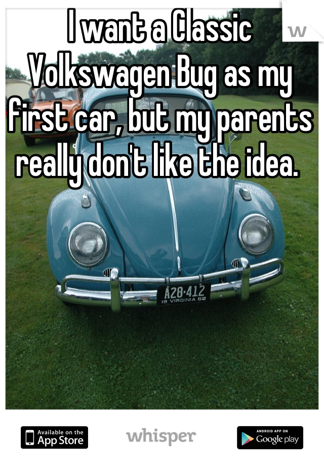 I want a Classic Volkswagen Bug as my first car, but my parents really don't like the idea.