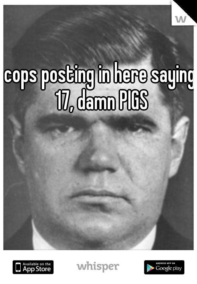 cops posting in here saying 17, damn PIGS