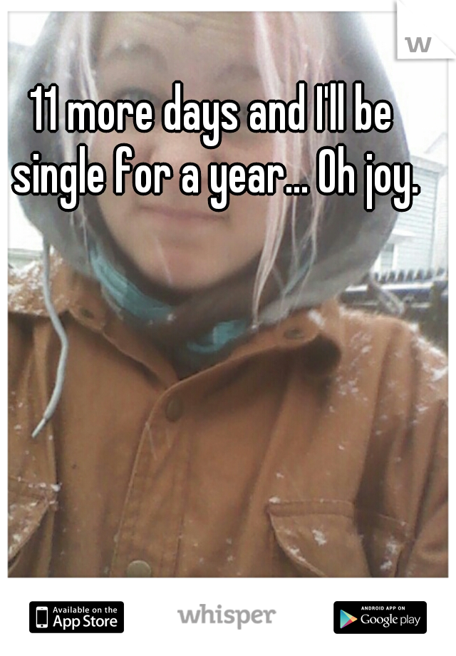 11 more days and I'll be single for a year... Oh joy.