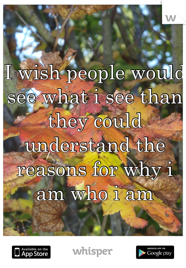 I wish people would see what i see than they could understand the reasons for why i am who i am
