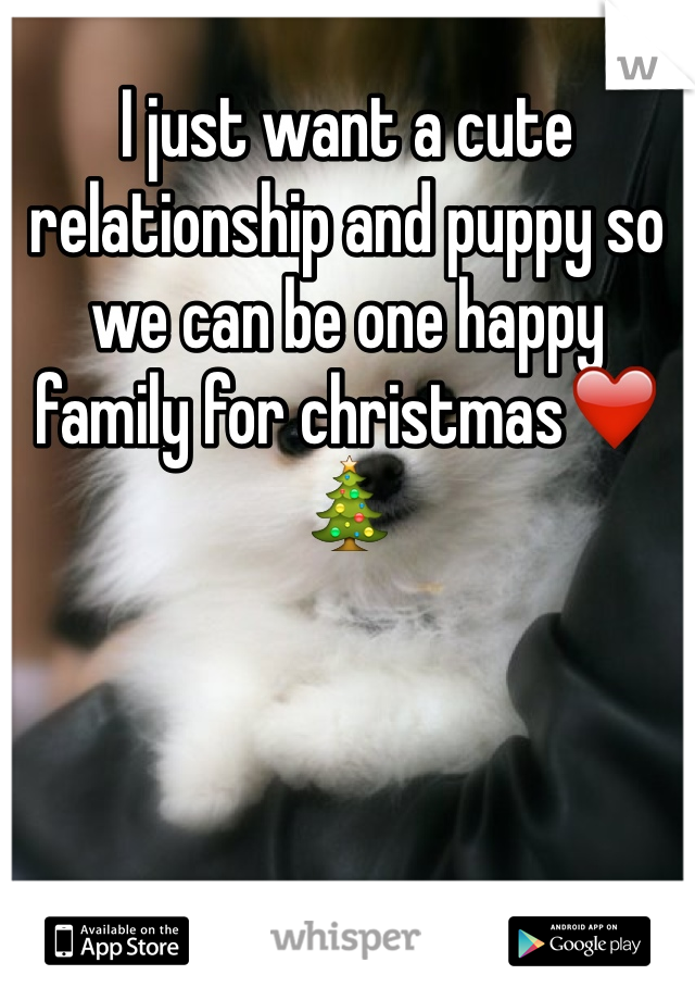 I just want a cute relationship and puppy so we can be one happy family for christmas❤️🎄