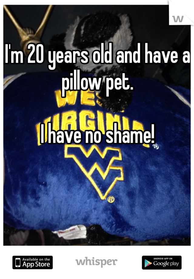 I'm 20 years old and have a pillow pet.  I have no shame!