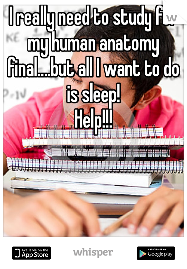 I really need to study for my human anatomy final....but all I want to do is sleep! Help!!!