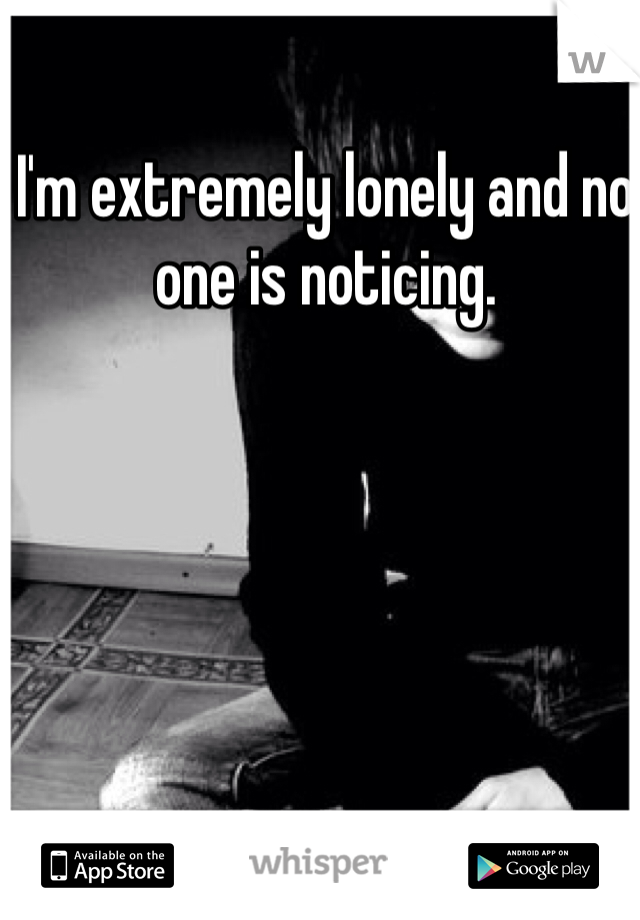 I'm extremely lonely and no one is noticing.