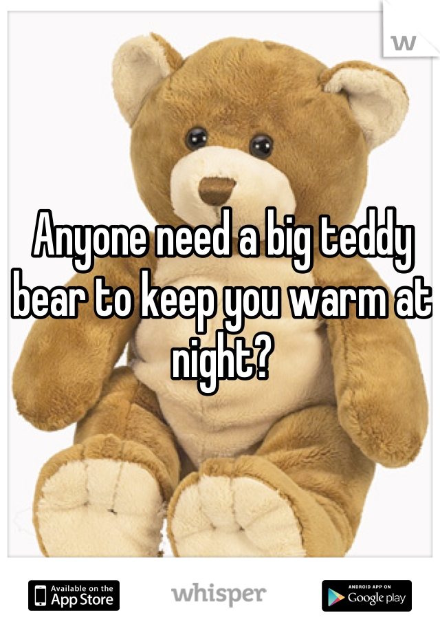 Anyone need a big teddy bear to keep you warm at night?