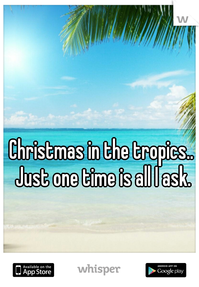 Christmas in the tropics.. Just one time is all I ask.