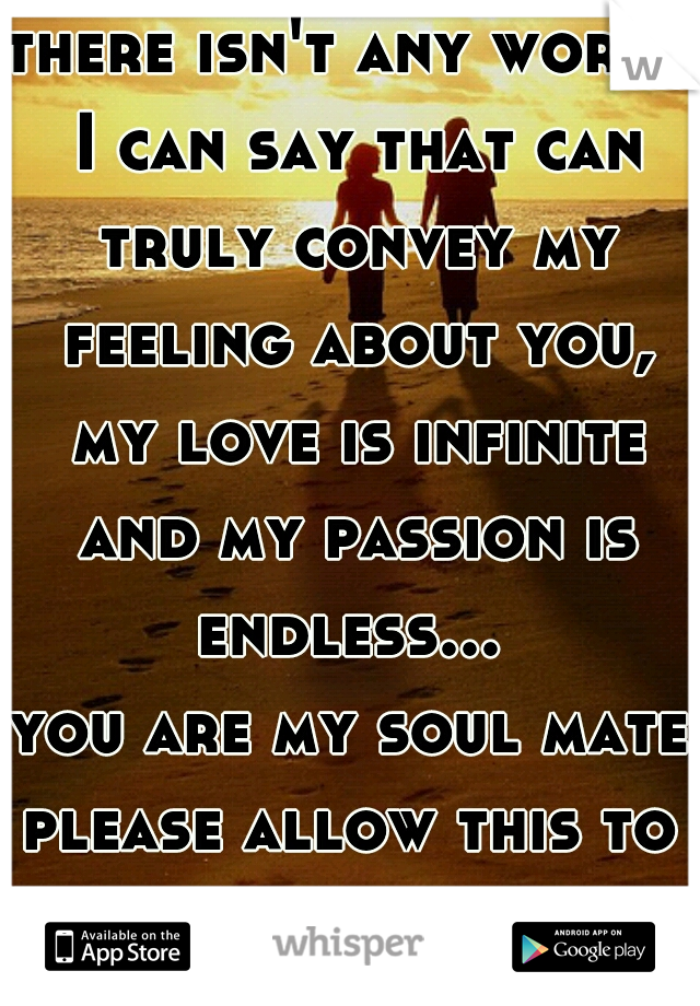 there isn't any words I can say that can truly convey my feeling about you, my love is infinite and my passion is endless...  you are my soul mate please allow this to be our faith