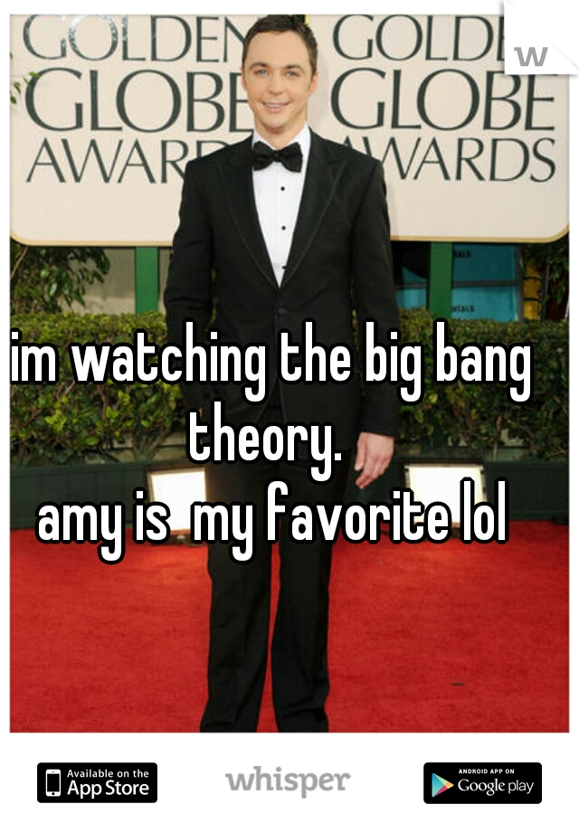 im watching the big bang theory.   amy is  my favorite lol