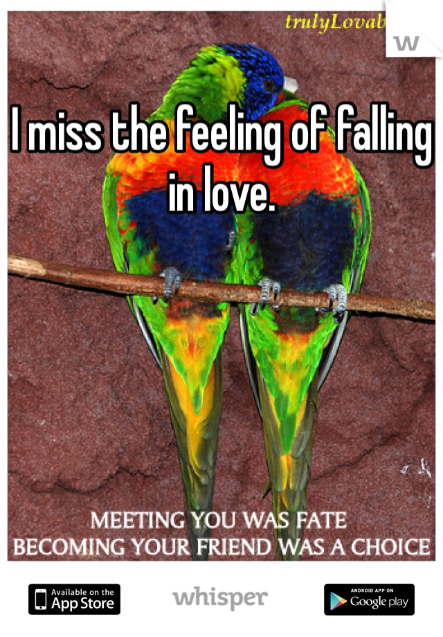 I miss the feeling of falling in love.