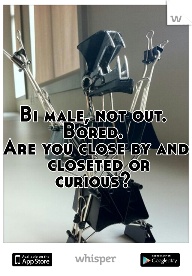 Bi male, not out.  Bored.  Are you close by and closeted or curious?
