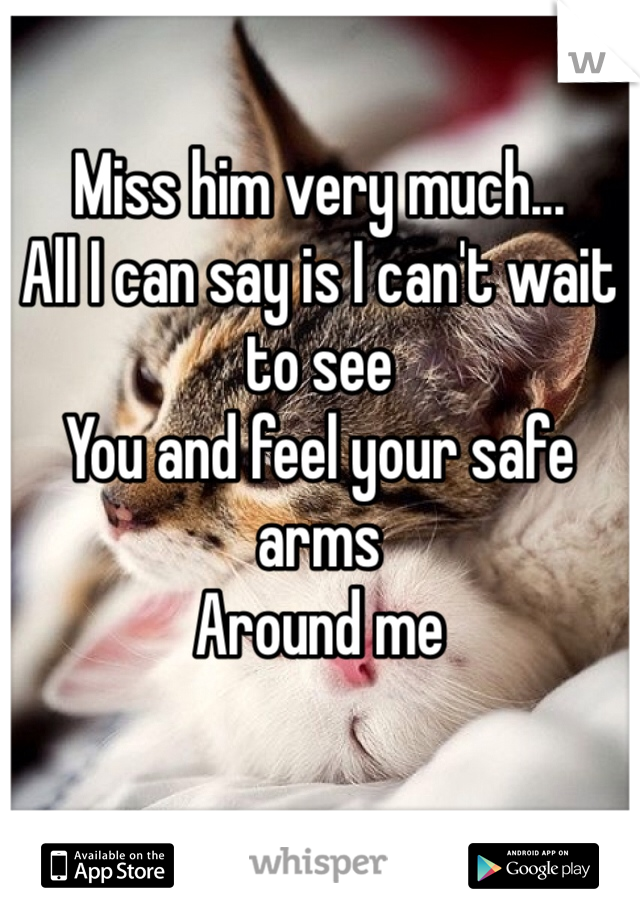 Miss him very much...  All I can say is I can't wait to see  You and feel your safe arms Around me