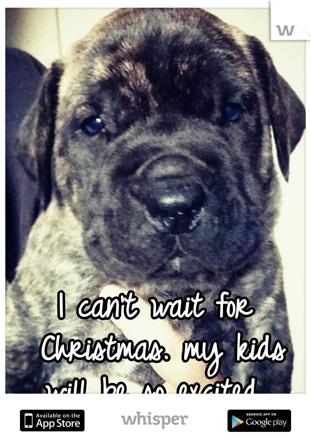 I can't wait for Christmas. my kids will be so excited.