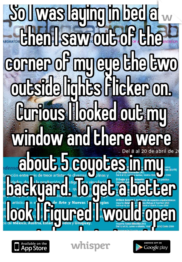 So I was laying in bed and then I saw out of the corner of my eye the two outside lights flicker on. Curious I looked out my window and there were about 5 coyotes in my backyard. To get a better look I figured I would open my window but since there was condensation on my window I gripped it differently and pushed it up and jammed my fingers so I just went downstairs to put bandaids on cause 3 of my fingers are gushing blood. My fingers hurt so bad and I'm crying and they are bleeding😭