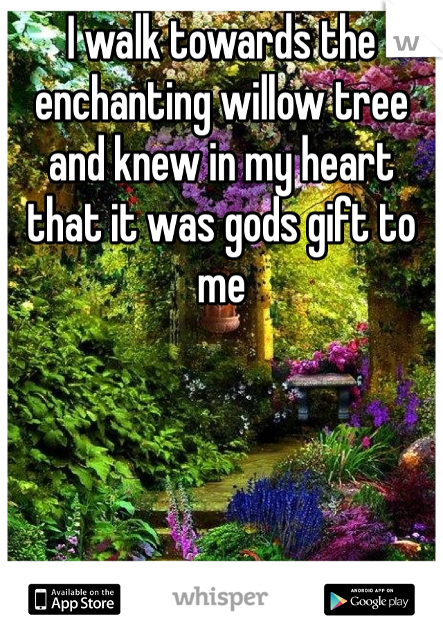 I walk towards the enchanting willow tree and knew in my heart that it was gods gift to me