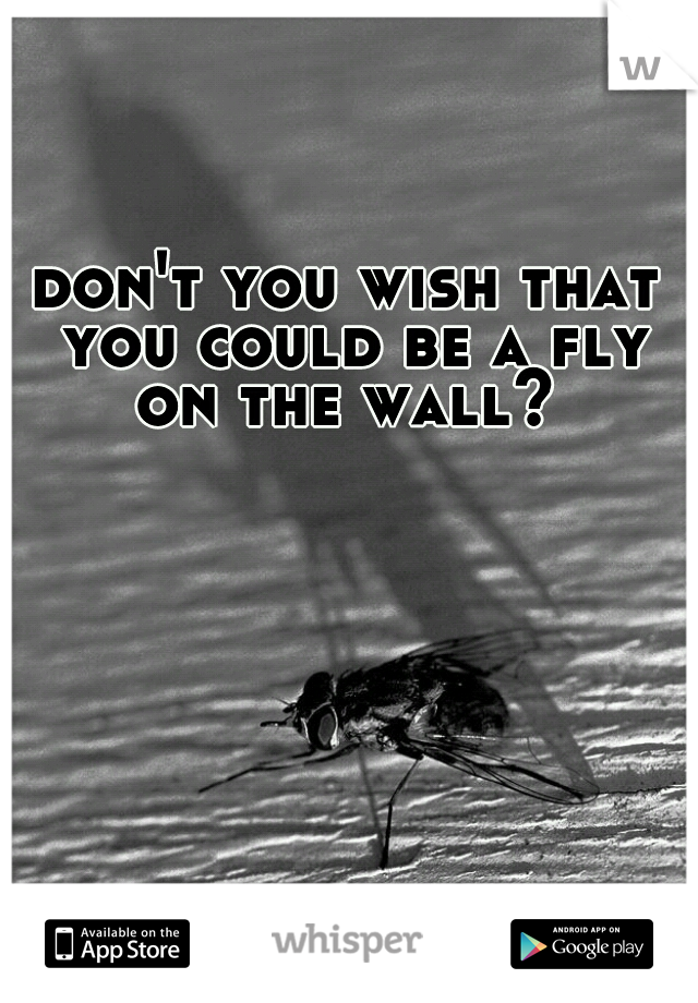 don't you wish that you could be a fly on the wall?