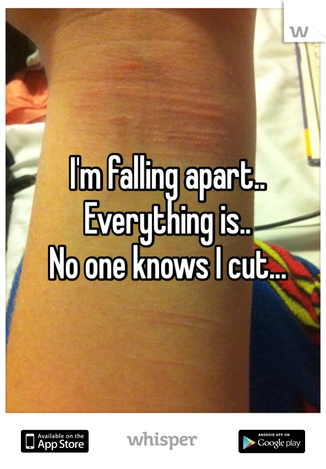 I'm falling apart.. Everything is.. No one knows I cut...