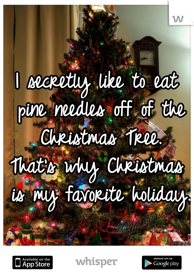 I secretly like to eat pine needles off of the Christmas Tree. That's why Christmas is my favorite holiday.