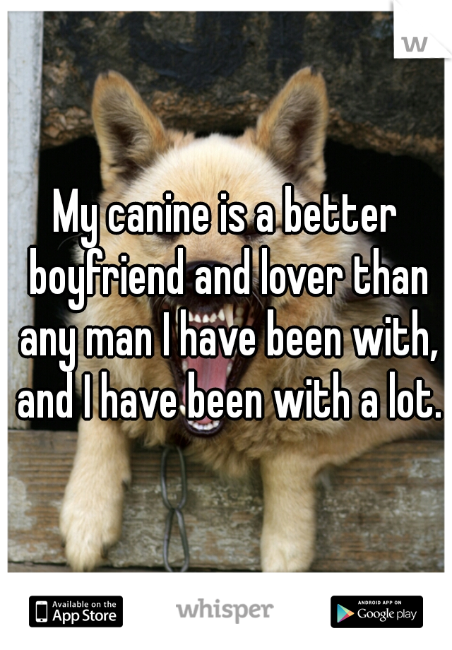 My canine is a better boyfriend and lover than any man I have been with, and I have been with a lot.