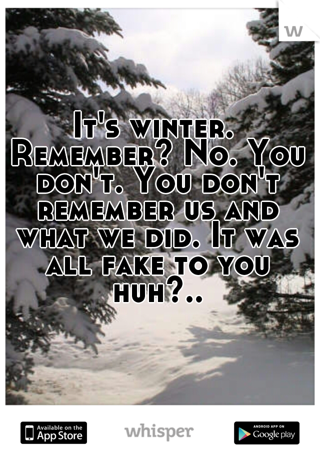 It's winter. Remember? No. You don't. You don't remember us and what we did. It was all fake to you huh?..