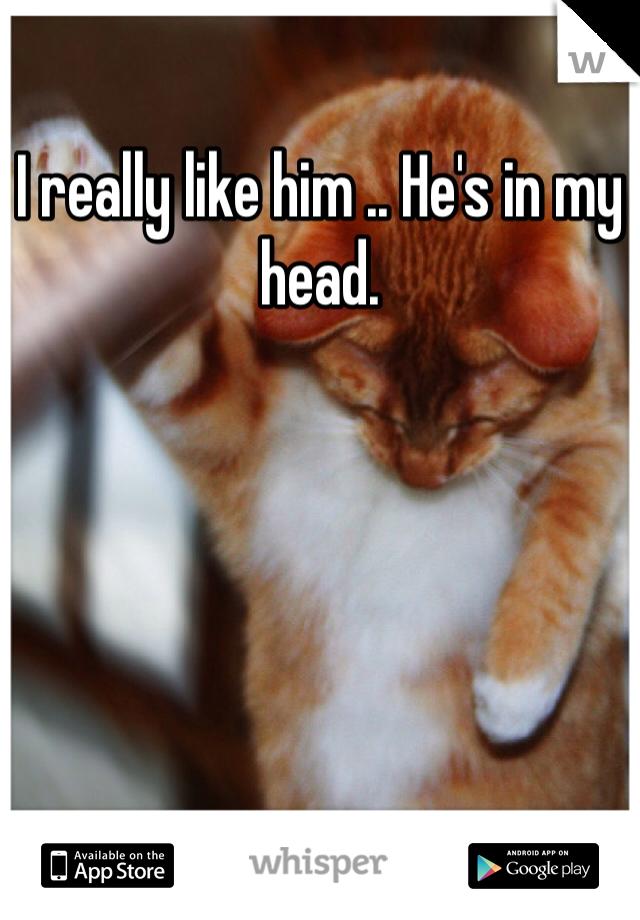 I really like him .. He's in my head.