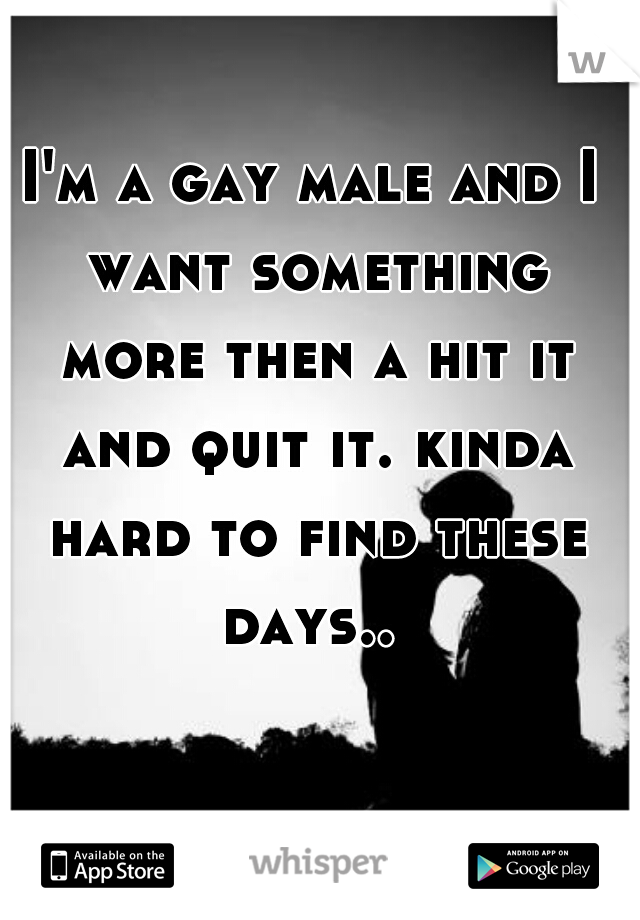 I'm a gay male and I want something more then a hit it and quit it. kinda hard to find these days..